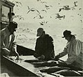 Commercial fisheries review (1967) (20045299894).jpg