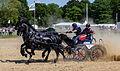 Concours national d'attelage élite Rennes 2014-1.jpg