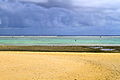 Cook Islands IMG 3766 (8451959927).jpg