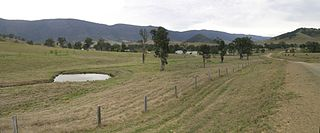 large Australian farm (station, the equivalent of an American ranch), whose main activity is the rearing of cattle