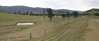Cattle station - Cooplacurripa cattle station, New South Wales, Australia