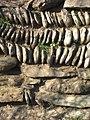 Cornish hedge at the rear of Porth Sawsen beach - geograph.org.uk - 1149878.jpg
