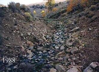 Cottonwood Creek, BLM, Oregon, 1988