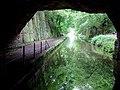 Cowley Tunnel near Gnosall, Staffordshire - geograph.org.uk - 1387825.jpg