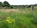Creevagh Townland - geograph.org.uk - 513233.jpg