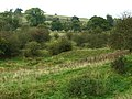 Croxton Park, near Croxton Kerrial - geograph.org.uk - 67369.jpg