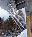 Curved icicles.jpg