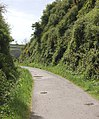 Cutting on the Camel Trail (2) - geograph.org.uk - 1286380.jpg