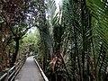 Cycling Road - panoramio.jpg