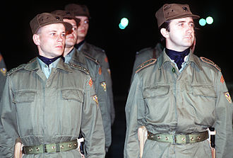 Czechoslovakia in the Gulf War - Czechoslovakian soldiers stand in formation as they prepare for a visiting dignitary during Operation Desert Shield.