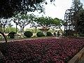 Daguan Park 5.jpg