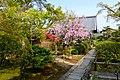 Daiho-in, Precincts -1 (April 2016) - panoramio.jpg