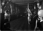 Dancers-acrobats performing at function (3856979845).jpg