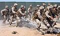 Defense.gov photo essay 100707-M-5112P-391.jpg