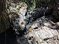 Delaneys Falls Secondary.jpg