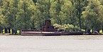 Delta del Danubio, Rumanía, 2016-05-28, DD 09.jpg