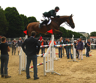 Belgian Warmblood - Denis Lynch and Nabab's Son, Dublin Horse Show 2008