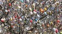 File:Der Ostereierbaum mit 10 000 OsterEier in Saalfeld. MVI 9919.webm