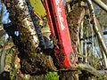 Detail muddy mountain bike 87141397 2023d70549.jpg