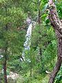 Dhukane, Uttarakhand 263135, India - panoramio - Vipin Vasudeva (3).jpg