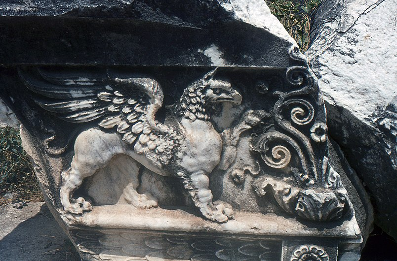 Didim-Temple d'Apollon-Griffon-1981.jpg