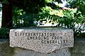 Differentiation Emerging From Generality bench at Ecotrust - panoramio.jpg