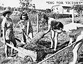 Digging for victory, 1941 (5278990531).jpg