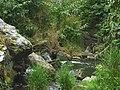 Divoká Šárka - panoramio (61).jpg