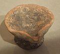 Diya - 5th-7th Century CE - Moghalmari Artefact - Kolkata 2014-09-14 7881.JPG