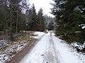 Dobřichovice, Hřebeny, hřebenová cesta, spojka u rozcestí U Trojáku.jpg