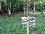 Doini Island Papua New Guinea Oceania Airport Sign.jpg