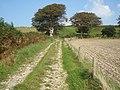 Dorset Jubilee Way - geograph.org.uk - 970747.jpg