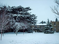 Downing College - lawn in snow - Feb 2009.JPG