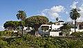 Drago milenario, Icod de los Vinos, Tenerife, España, 2012-12-13, DD 13.jpg
