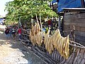 Drying tabacco plants - panoramio.jpg