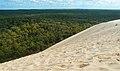 Dune-du-Pilat+pinede-byMmeRundvald.jpg