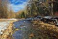 East Branch Fishing Creek.jpg
