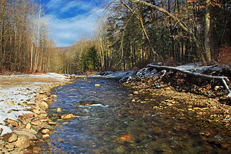 Fishing Creek (North Branch Susquehanna River) - The East Branch of Fishing Creek at the Sullivan County – Columbia County line
