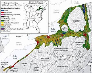 ecoregion in the United States