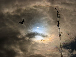 Photo taken in Valladolid, Spain, during the October 3, 2005, annular eclipse.