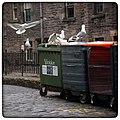 Edinburgh (19300461466).jpg
