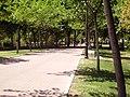 El Goloso, Madrid, Spain - panoramio - Ricardo Ricote Rodrí… (7).jpg