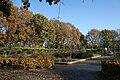 Erasmuspark3.jpg