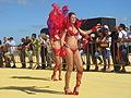 Escola de Samba Charanguinha Ovar 2 (15797194730).jpg
