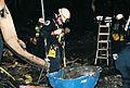 FEMA - 4426 - Photograph by Jocelyn Augustino taken on 09-13-2001 in Virginia.jpg
