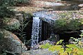 FallingWaters fall colors - panoramio (21).jpg