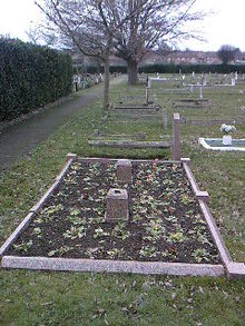 A flat grave surrounded by a stone border with small plants in tended bare earth. In the centre are two stone blocks. In the background are similar grass-covered graves.