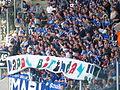 Fans auf Schalke.jpg