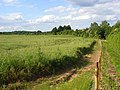 Farmland, Cookham - geograph.org.uk - 849757.jpg