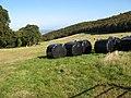 Farmland by Gopa Wood - geograph.org.uk - 997755.jpg